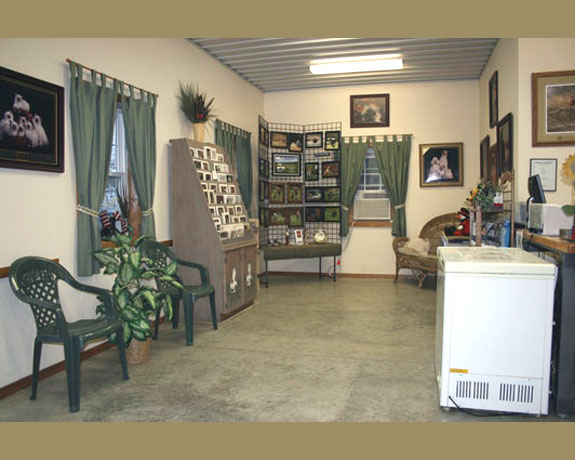 Paws & Tails Kennel Lobby